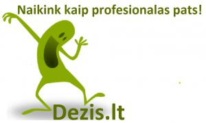 DEZIS_LOGO